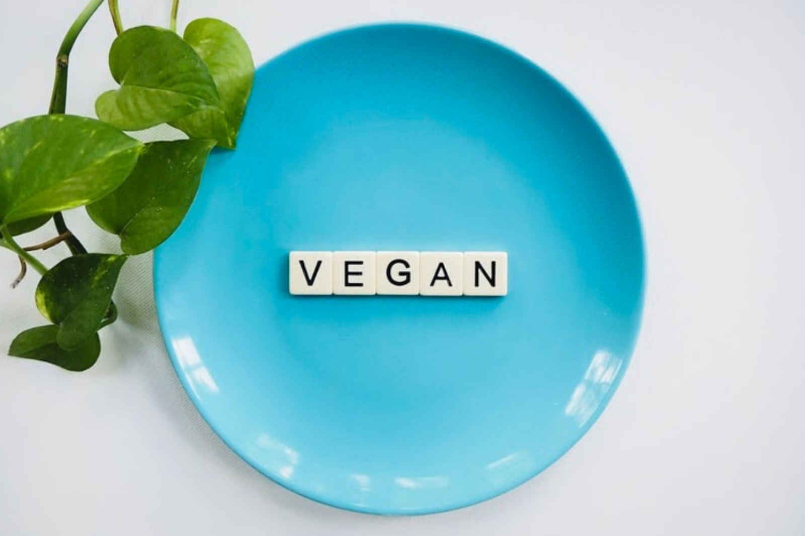 Vegan Plate   40 Famous Vegan Celebrities You Probably Don't Know About