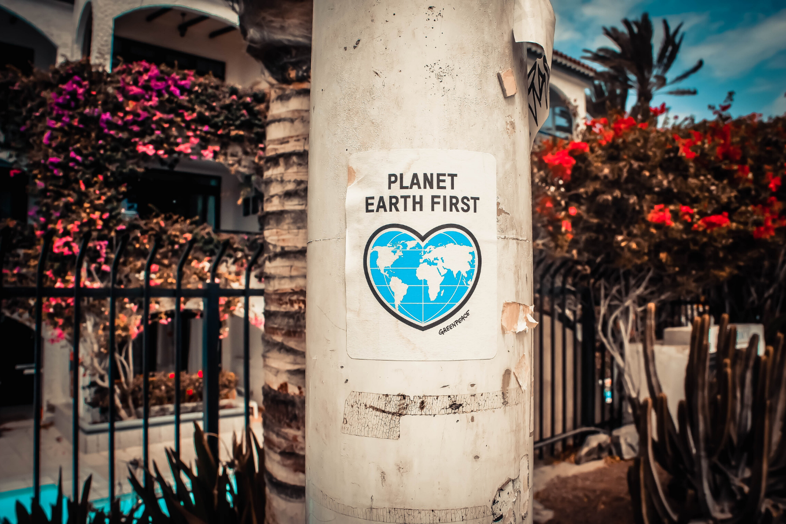 Planet Earth First Poster | 18 Popular Snack Foods That Are Actually Vegan Approved